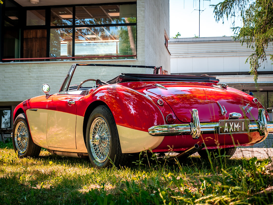 Punavalkoinen 1964 Austin-Healey 3000 Mk3 Gustavelundin pihalla