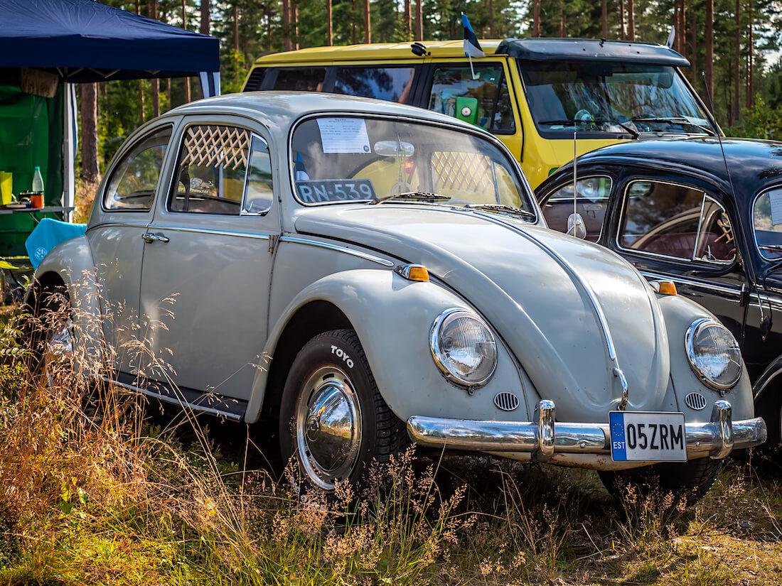 Harmaa 1965 Volkswagen 1200 kupla leirintäalueella