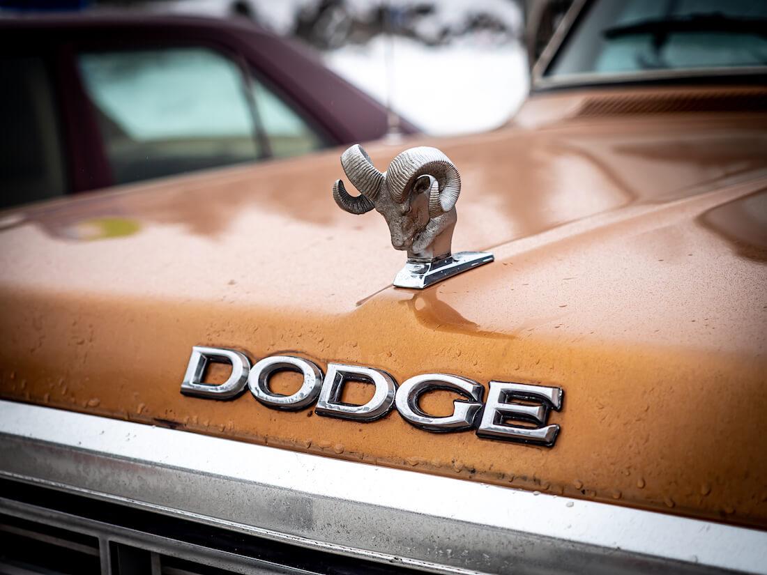 Dodgen kaksisarvinen oinas keulamerkki